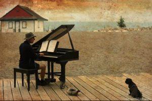 Dog enjoying piano music